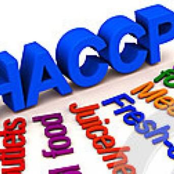cropped-zone-di-norma-alimentare-di-haccp-25918006.jpg